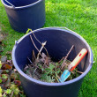 A photo of two buckets in a garden — Stock Photo
