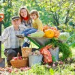 Happy family harvests of apples — Stock Photo #12837402