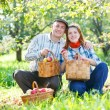 Happy couple in the garden harvests — Stock Photo #14565061