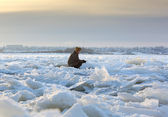 Man sitting among the debris of ice — Стоковое фото