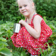 Girl collects strawberries — Stock Photo