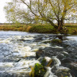 Fast River — Stock Photo