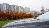 Raindrops on the hood — Stock Photo