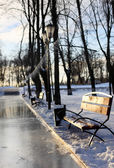Ice rink park — Stock Photo
