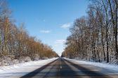 Strada in inverno — Foto Stock