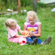 Two girls playing on the green grass — Stock Photo #39453205