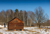 Wooden house in the forest — Stock Photo