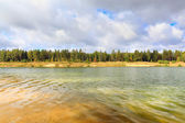 Waterfront beach  forest lake — Stock Photo
