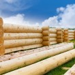 Building a house from wooden logs — Stock Photo #46263043