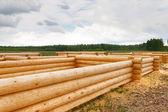 Construindo uma casa de toras de madeira — Foto Stock
