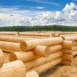 Building a house from wooden logs — Stock Photo #46573951