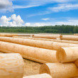 Building a house from wooden logs — Stock Photo #46573957