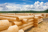 Building a house from wooden logs — Stock Photo