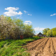 Plowed field on a background of rural houses — Stock Photo #46585343