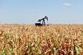Oil well and corn field — Stock Photo