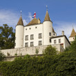 Nyon Castle — Stock Photo #14151854
