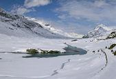Lago Bianco — Stock Photo