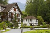 Wine grower's house from Richterswil — Stock Photo