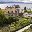 Nyon town and lake Geneva — Stock Photo