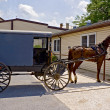 Amish Horse and Buggy — Stock Photo #5236041