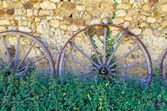 Chariot wheels and nettles — Stock Photo