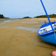 Low tide in Brittany — Stock Photo #13789018