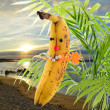 Funny bananin sun — Stock Photo #32659049