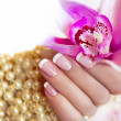 Royalty-Free Stock Photo: French manicure.