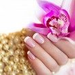 French manicure. - Stock Photo