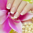 French manicure. - Foto de Stock