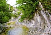 Mountain river. — Stock Photo
