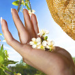 Spring in the palm of your hand. — Stock Photo