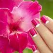 Stock Photo: Beautiful pink manicure.