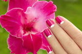 Beautiful pink manicure. — Stock Photo