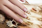 Nail design shells. — Stock Photo