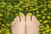 Pedicure in the grass. — Stock Photo