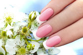 French manicure. — Stock Photo