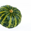 Decorative gourd. — Stock Photo #7613673