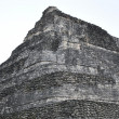 Chacchoben Mayan Ruins - Foto Stock