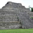 Chacchoben Mayan Ruins - Stock Photo