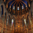 Notre Dame Basilica in Ottawa — Stock Photo