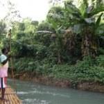 Постер, плакат: Bamboo Rafting on the Martha Brae River in Jamaica