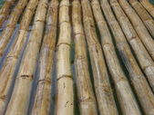 Bamboo Rafting on the Martha Brae River in Jamaica — Stock Photo