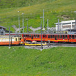Foto de Stock  : Train to Jungfraujoch in Switzerland