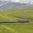 Train to Jungfraujoch in Switzerland — Stock Photo #14059968