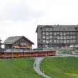Train to Jungfraujoch in Switzerland — Stock Photo #14060595