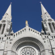 Shrine and Cathedral at Ste Anne de Beaupre -  