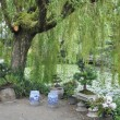 Dr. Sun Yat-Sen Classical Chinese Garden in Vancouver - Stock Photo