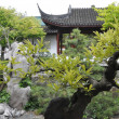 Dr. Sun Yat-Sen Classical Chinese Garden in Vancouver — Stock Photo #14273139