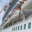 Постер, плакат: Ruby Princess Cruise Ship